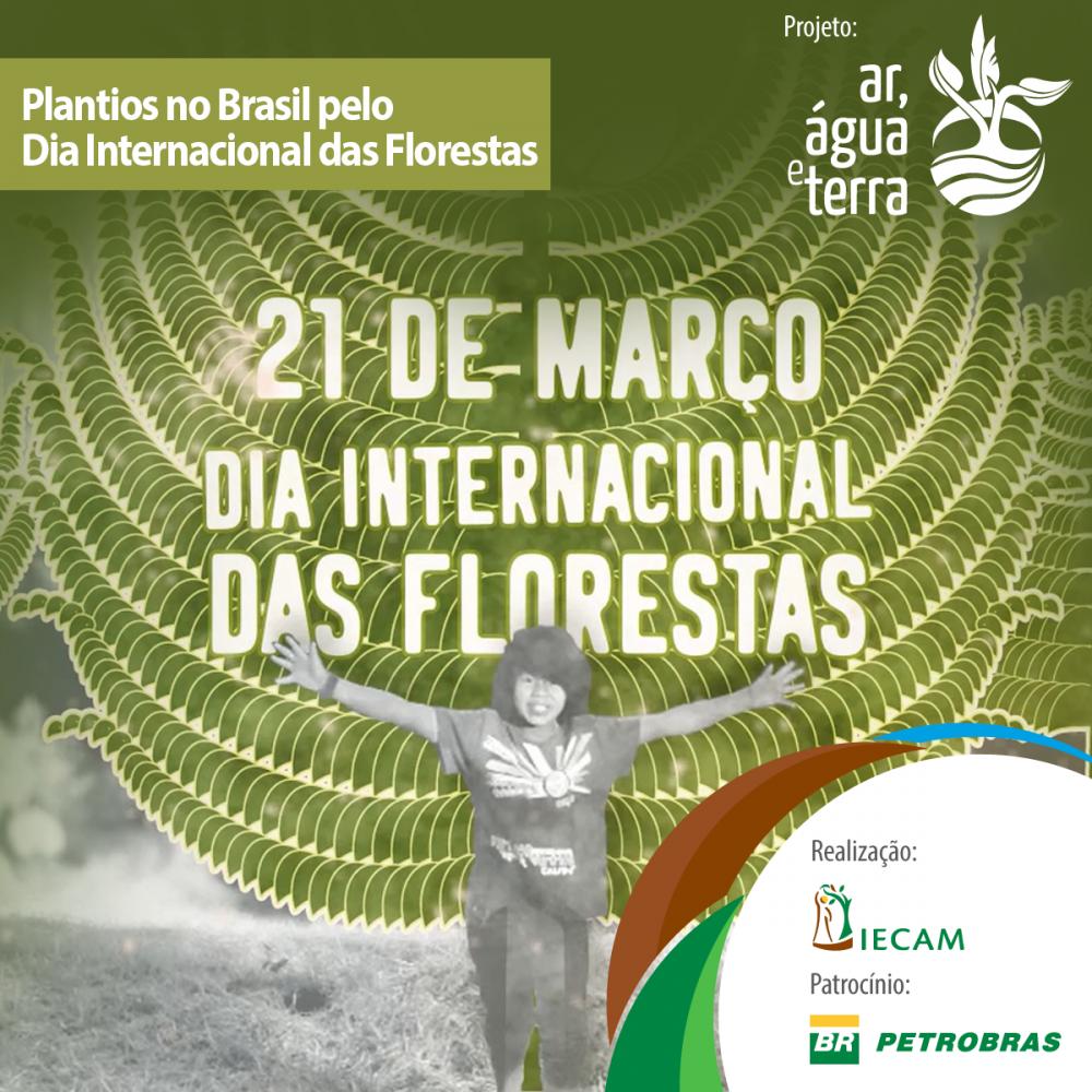 Vídeo Homenagem | Dia Internacional das Florestas