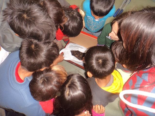 Atividades de educação ambiental para crianças da Escola de Anhetenguá