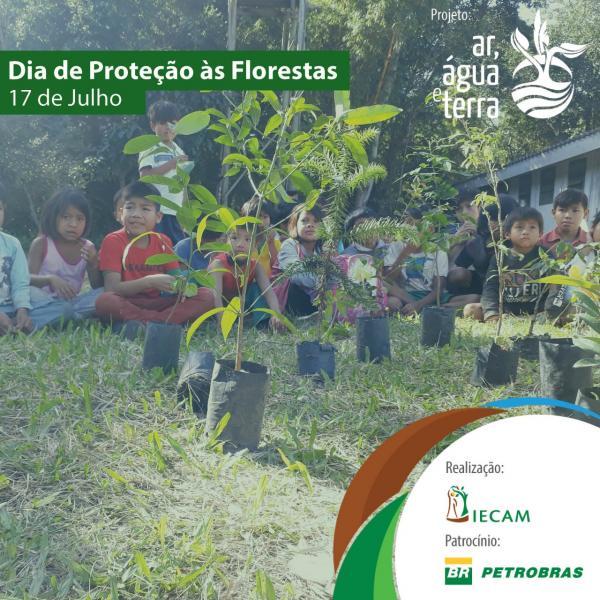 AR, ÁGUA E TERRA E PROJETOS PATROCINADOS PELA PETROBRAS PLANTARÃO MAIS DE 4.500 MUDAS DE ESPÉCIES AMEAÇADAS EM TODO O BRASIL