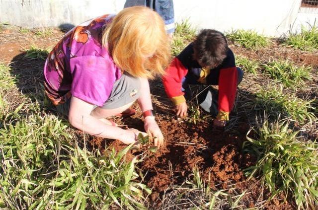 IECAM e indígenas plantam 450 mudas