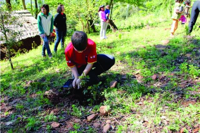 Crianças se unem para plantio no Dia da Árvore