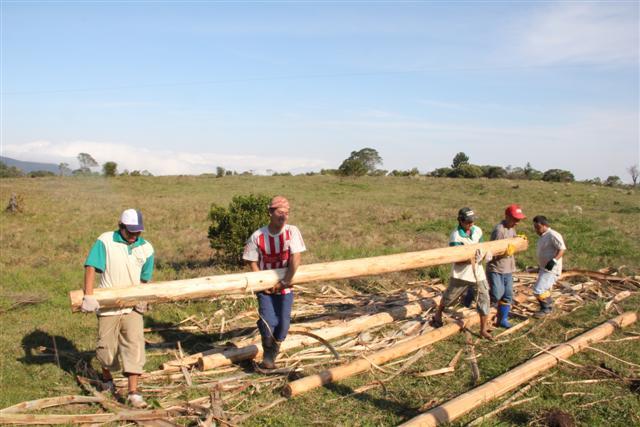 Projeto amplia estrutura de cultivo de mudas em aldeias