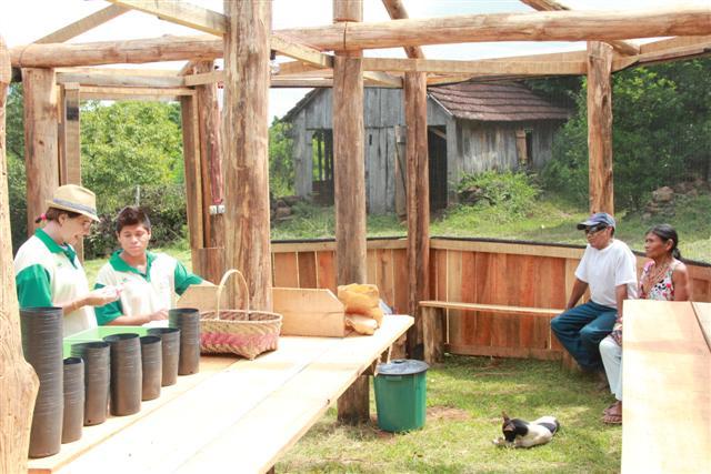 Indígenas da aldeia Pindoty aprendem a trabalhar no viveiro