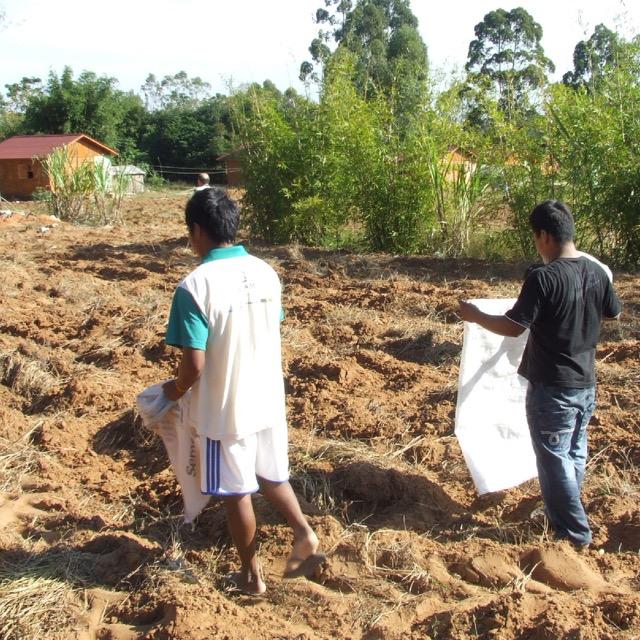 IECAM faz manejo das terras de aldeias guarani