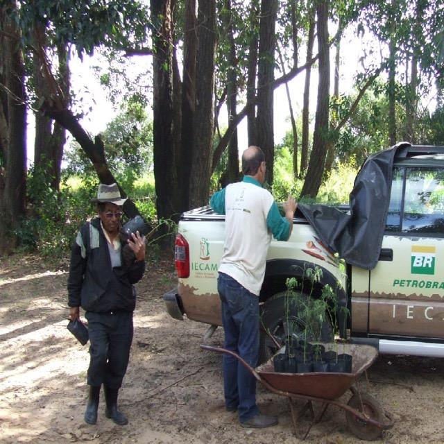 IECAM recebe novas mudas para plantio nas aldeias