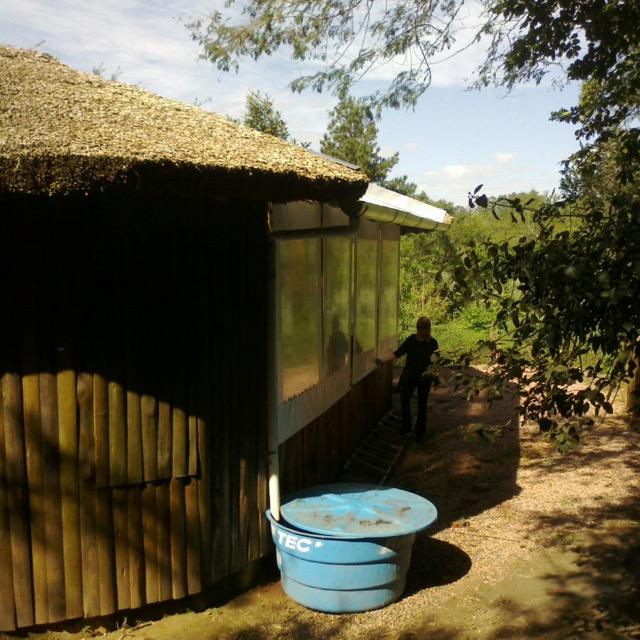 Ações simples buscam promover o desenvolvimento sustentável