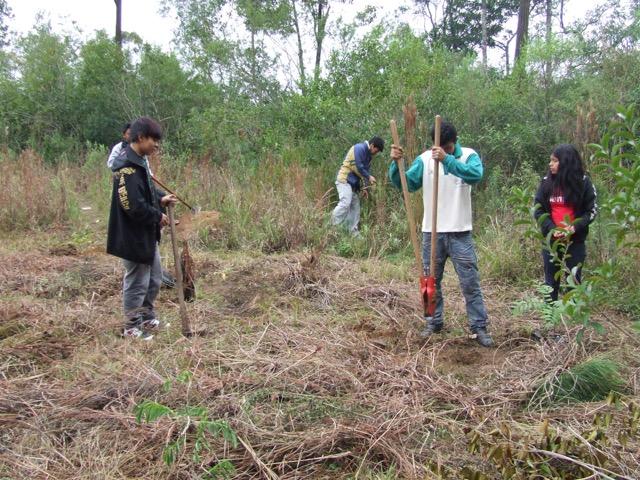 Escola guarani e IECAM trabalham juntos na limpeza da aldeia