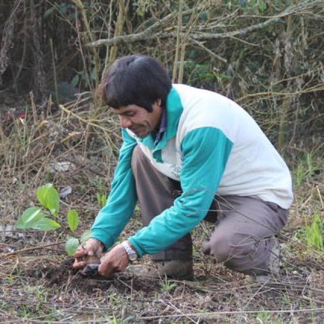 Cacique José fala sobre o projeto Ar, Água e Terra