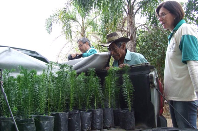 Aldeia de Itapuã recebe sementes e mudas