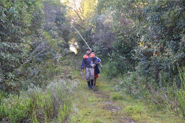 Uma possível aliança entre a conservação da natureza e o modo de ser e viver Guarani