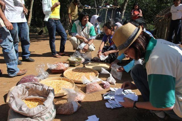 Aldeias discutem importância da agricultura Guarani