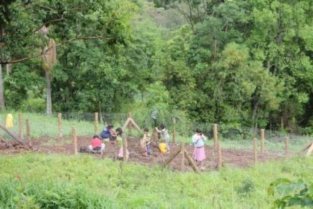 Aldeia Itapoty - Riozinho realiza plantio de mudas em família.