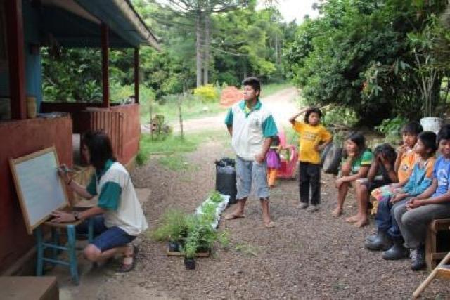 Cultivo de hortaliças
