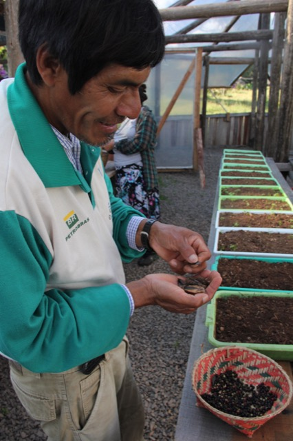 IECAM reafirma laços com a Petrobras e com os Guarani no Projeto Ar, Água e Terra: Vida e Cultura Guarani