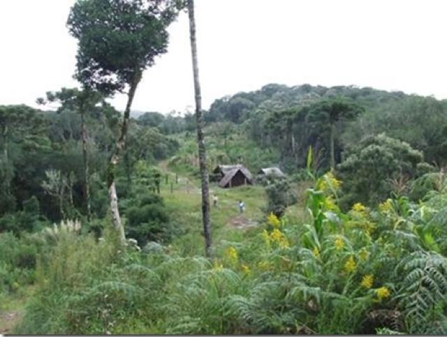 Projeto Ar, Água e Terra: Vida e Cultura Guarani proporciona trocas interculturais