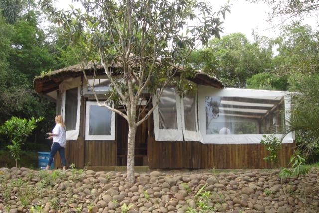 O viveirismo com os guarani